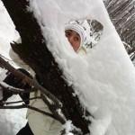 интересно-зимой-в-лесу