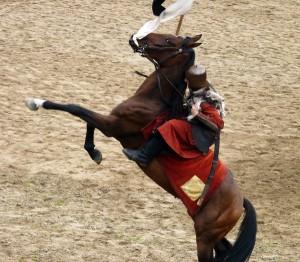 исторические-реконструкции-на-коне