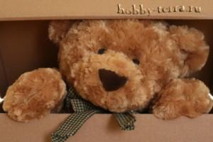 Мишка-Тедди