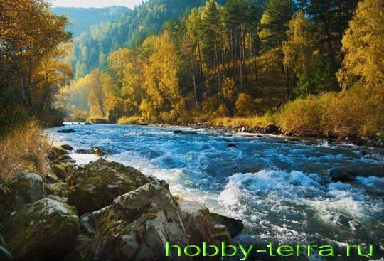 реки для сплава