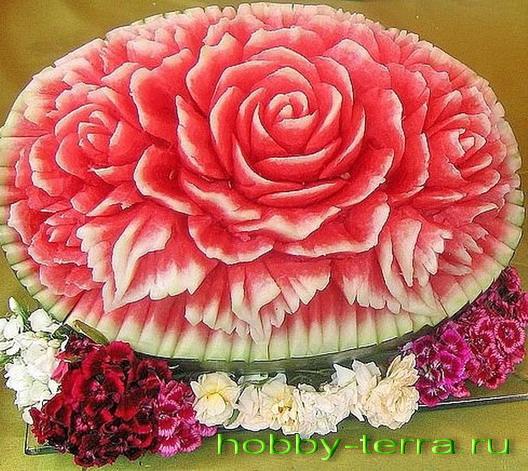 роза на арбузе