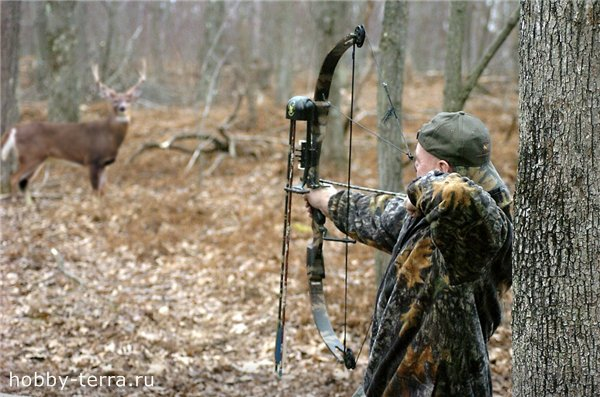 что нужно брать с собой на охоту